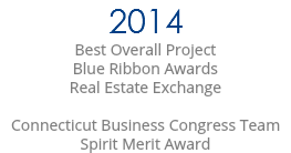 2014 Best Overall Project Blue Ribbon Awards Real Estate Exchange Connecticut Business Congress Team Spirit Merit Award